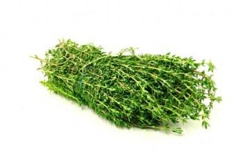 zöldfüszer