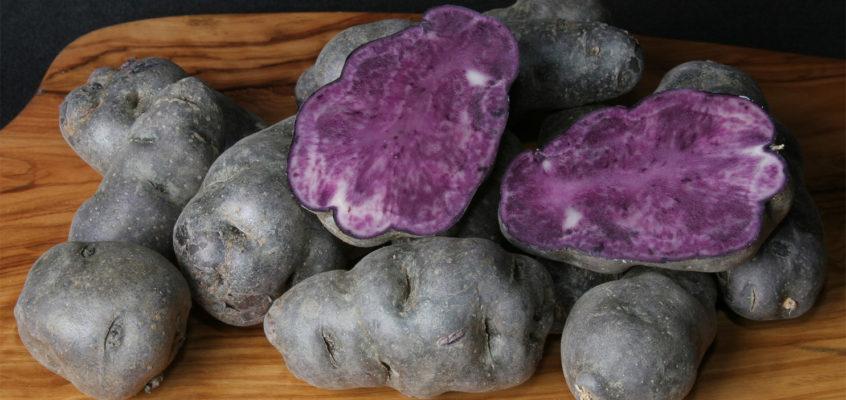 A burgonyák királya a lila krumpli