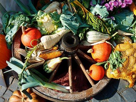 5 egyszerű zöldséggel a rák ellen